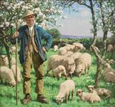Farmer with his Flock of Sheep