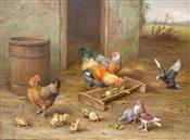 Chickens & Doves (Part of pair Farmyard Scene 2)